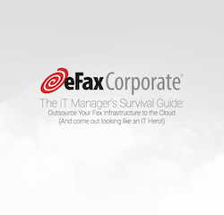 the-it-managers-survival-guide